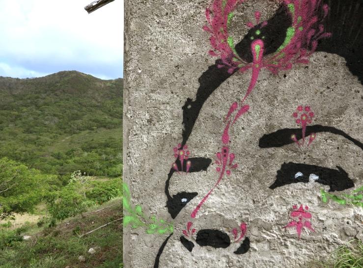 stinkfish_providence_island_colombia_02